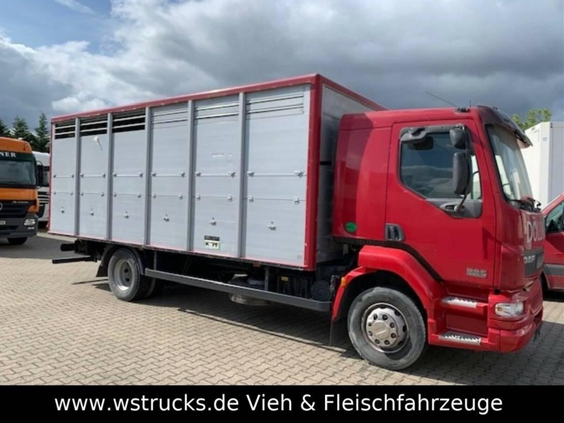 paardenvrachtwagen DAF LF 55 Einstock Köpf 2006