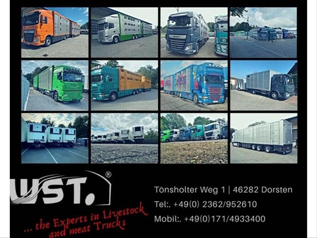 paardenvrachtwagen MAN TGX 26.440 LX Menke 3 Stock Hubdach 2011