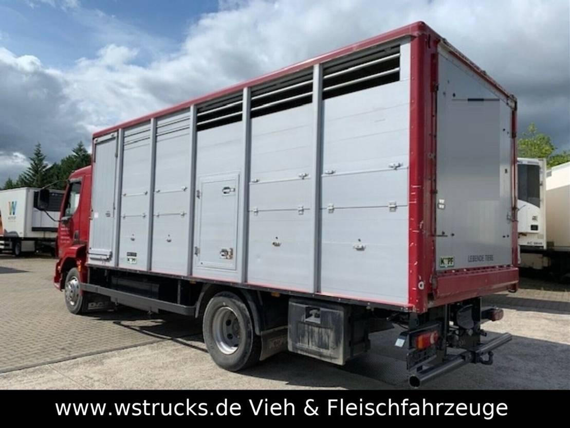 paardenvrachtwagen DAF LF 55 Einstock KABA 2006
