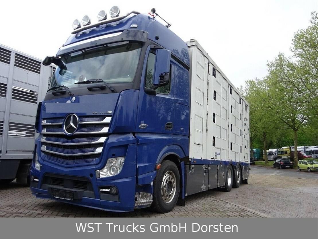 paardenvrachtwagen Mercedes-Benz Actros 2551 Menke 4 Stock Vollalu Hubach 2013