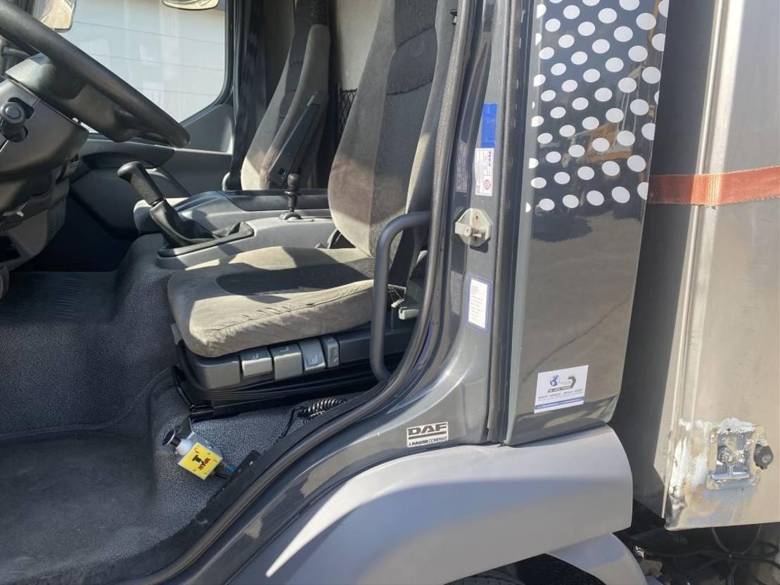 autotransporter vrachtwagen DAF LF 45.220 DEPANNAGE/RECOVERY TRUCK EURO4 2009